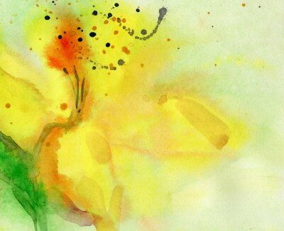 Canvas print watercolor background with yellow lily. Painting on paper.