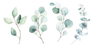 Canvas print Watercolor floral illustration set - green leaf branches collection, for wedding stationary, greetings, wallpapers, fashion, background. Eucalyptus, olive, green leaves, etc.