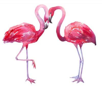 Canvas print watercolor illustration of a flamingo