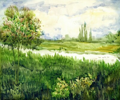 Canvas print Watercolor landscape. Young tree in meadow near river