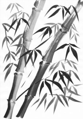 Canvas print Watercolor of two bamboo stalks painted with grunge strokes. Black gouache on white paper study.