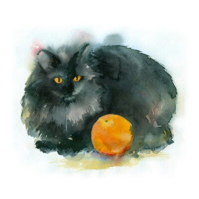 Canvas print Watercolor painting. Black cat with orange.