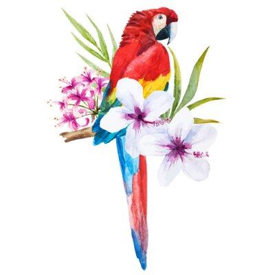 Canvas print Watercolor parrot