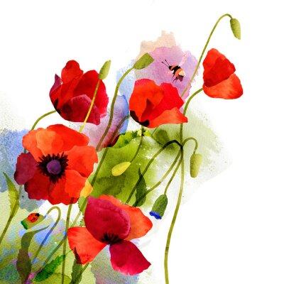 Canvas print Watercolor poppy