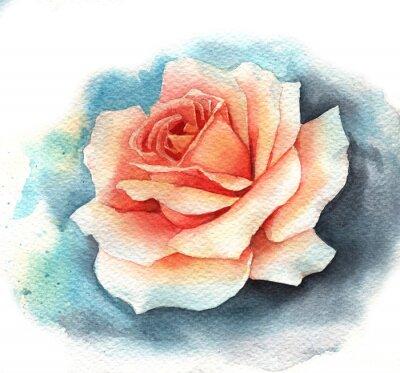 Canvas print Watercolor rose