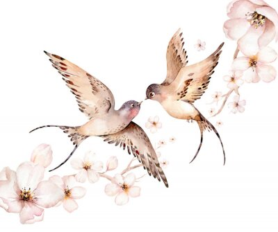 Canvas print Watercolor spring flying swallows isolated and blossom flowers on white background