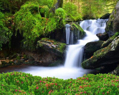 Canvas print Waterfall in the national park Sumava-Czech Republic