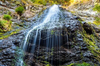 Canvas print Waterfall in the wild forest