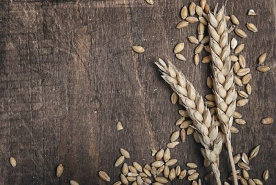 Canvas print Wheat ears