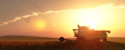 Canvas print wheat harvester