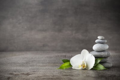 Canvas print White orchid and spa stones on the grey background.