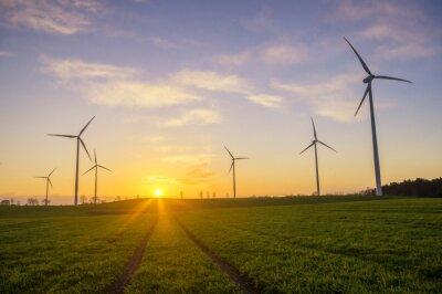 Canvas print Wiatraki(turbiny wiatrowe)