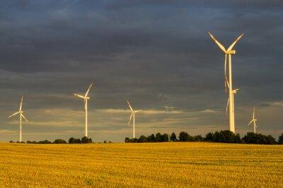Canvas print Wiatraki(turbiny wiatrowe) w świetle wschodzącego słońca