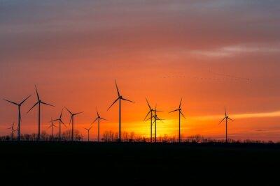 Canvas print Windräder in der Natur mit Vogelschwarm im Sonnenuntergang