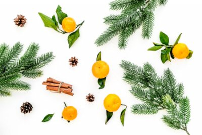 Winter fruits for New Year and Christmas. Tangerines, fir tree and cinnamon on white background top view