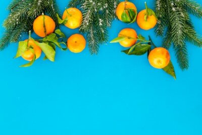 Winter fruits for New Year and Christmas. Tangerines, fir tree on blue background top view mock-up