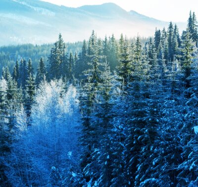Canvas print Winter mountains