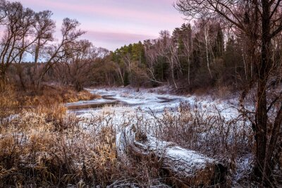 Canvas print Winter or Spring river and wood