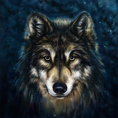Canvas print wolf front