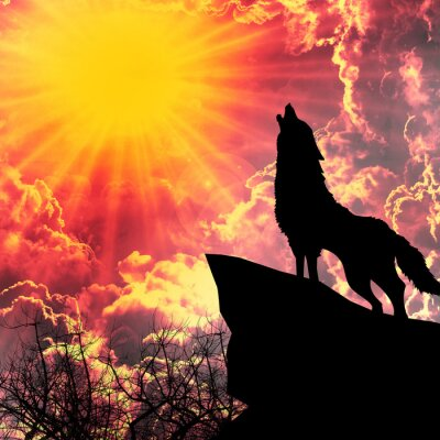 Canvas print wolf in silhouette howling to the full moon