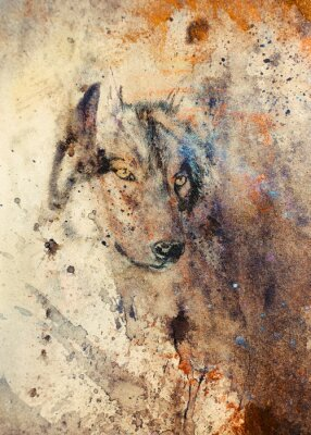 Canvas print  Wolf painting, color abstract effect on background