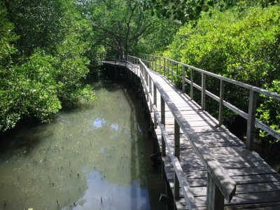 Canvas print Wooden Bridge On Riverside