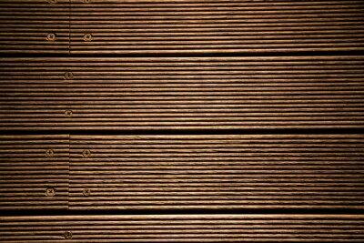 Canvas print woody