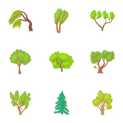 Canvas print Woody plants icons set. Cartoon illustration of 9 woody plants vector icons for web