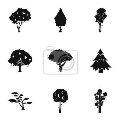 Canvas print Woody plants icons set. Simple illustration of 9 woody plants vector icons for web