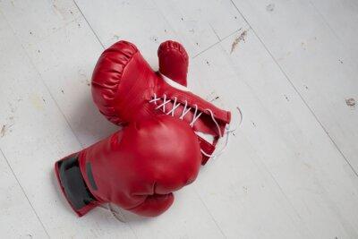 Canvas print ボクシンググローブ