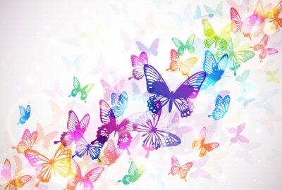 Canvas print 蝶々