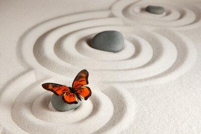 Canvas print Zen rocks with butterfly
