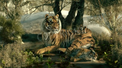 Wall mural 3d computer graphics of a tiger mother with two babies