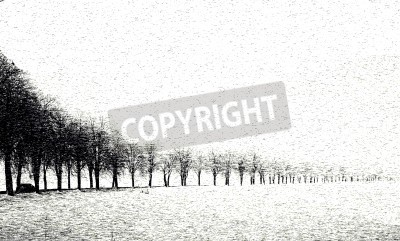 Wall mural A avenue in the wintertime  A car driving along this road  The photo ist picturesque alienated