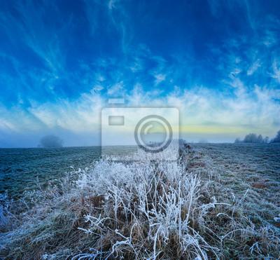 a beautiful frozen winter landscape