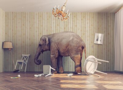 Wall mural a elephant in a room