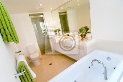 A luxury modern bathroom