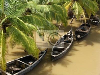 a river in kerala, south india, in the rainy season