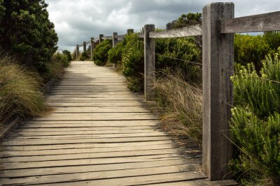Wall mural A wooden walkway along a fence with green vegetation growing on both sides under a cloudy sky. This is located somewhere along the great ocean road in Australia.