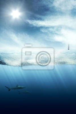 Above and below water