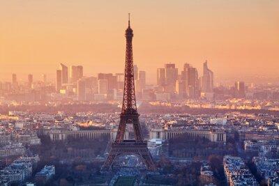 Wall mural Aerial view of Paris at sunset
