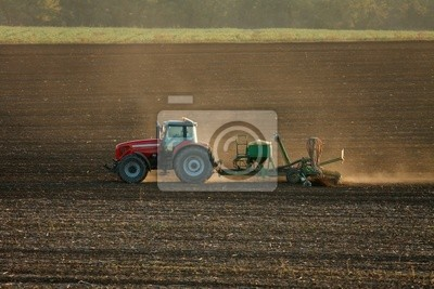 Wall mural Agriculture