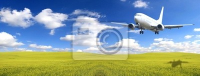 Airplane above green field
