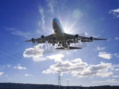 Wall mural Airplane take off
