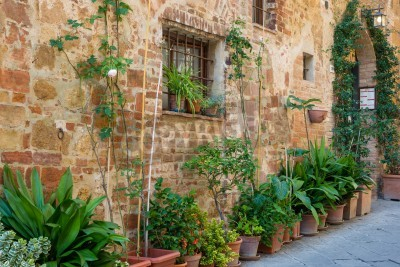 Wall mural Alley in Italian old town Pienza Tuscany Italy