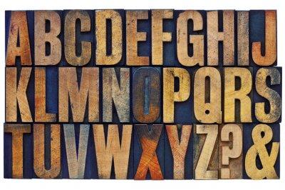 Wall mural alphabet in letterpress wood type blocks