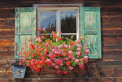 Wall mural altes Holzfenster mit Blumenkasten