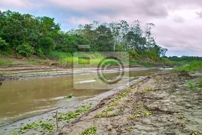 Amazon inflow ( Yanayacu ) in the dry season (Loreto, Peru )