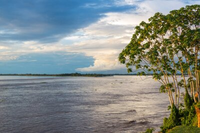 Wall mural Amazon River View