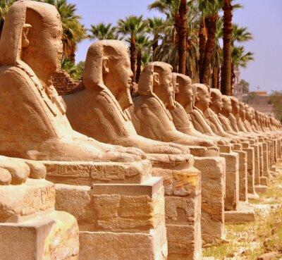 Wall mural Amun Tempel von Luxor